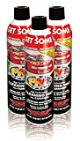 FW1 Wash & Wax Waterless Polish with Carnauba 17.50oz